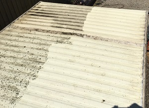 Cleaning Caravan Roof Curlewis