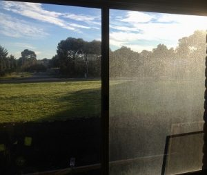 Domestic window cleaning geelong