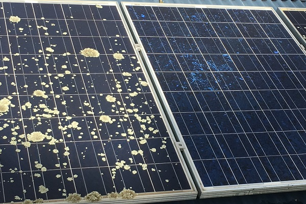 Rooftop Solar panel cleaning geelong